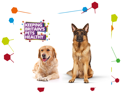 Image of a Golden Retriever, Alsatian and the Keeping Britain's Pets Healthy logo