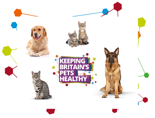 Image of two kittens, a cat and two dogs with the Keeping Britain's Pets Healthy logo