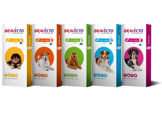 Image of Bravecto spot on for dogs product range