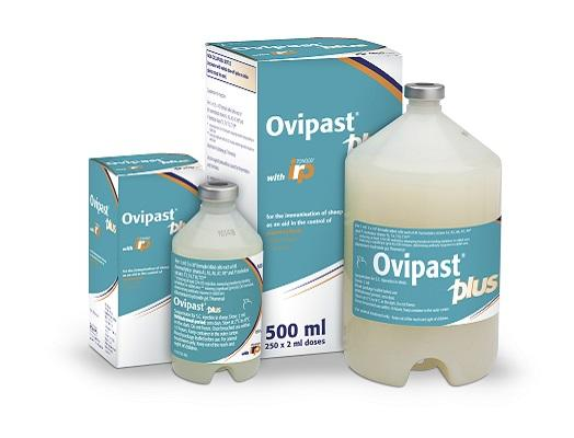 Image of Ovipast Plus bottle and cardboard carton