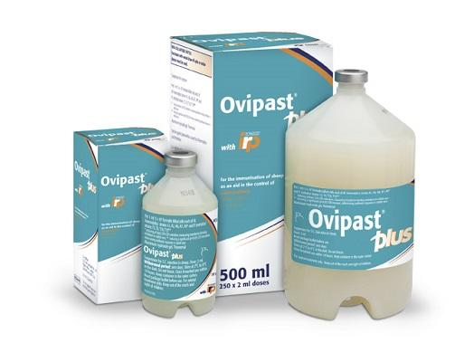 Image of Ovipast Plus containers and cardboard cartons