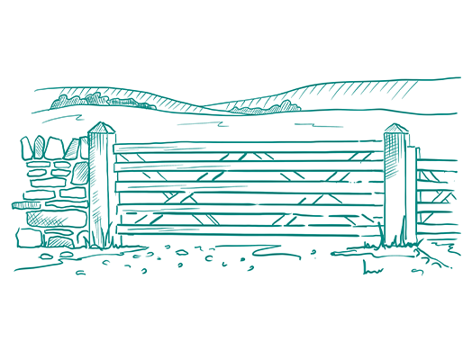 graphic wooden gate