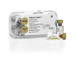 Image of Nobivac  Lepto 2 vials next to it's plastic tray