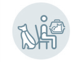 Image of a graphic representing a vet practice waiting room
