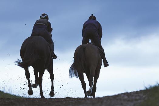 Image of horses recing.