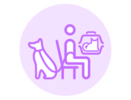 Image of an illustration of a vet practice waiting room