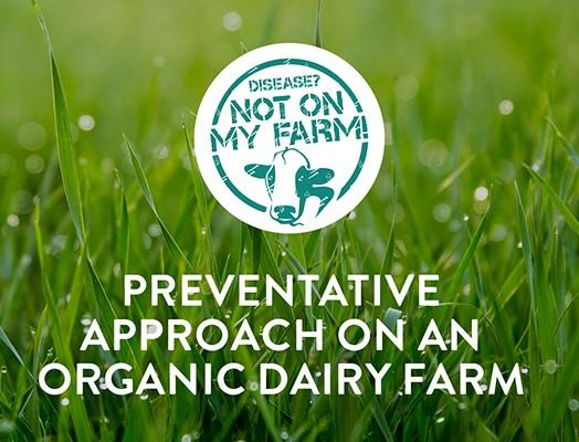 Preventative health on organic dairy farm
