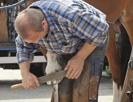 Image of farrier