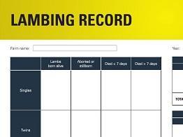 Lambing record image