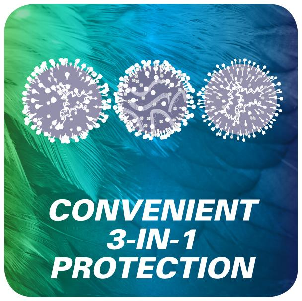 innovax convenient 3 in 1 protection