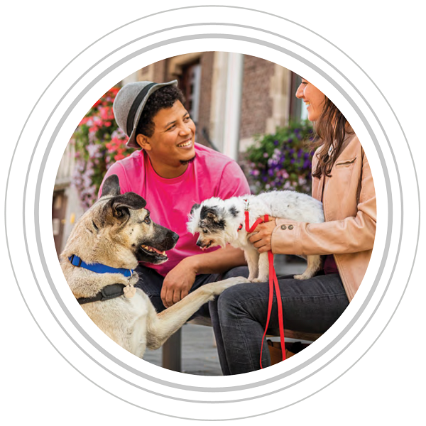 Image of a man and women and their two dogs in grey circles