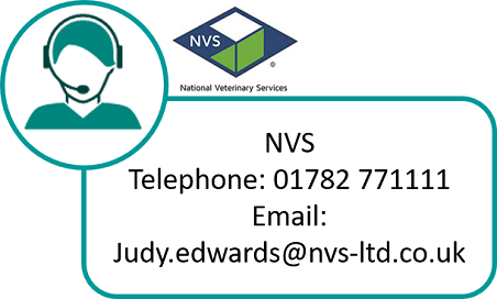 Image of a call handler icon with NVS contact details