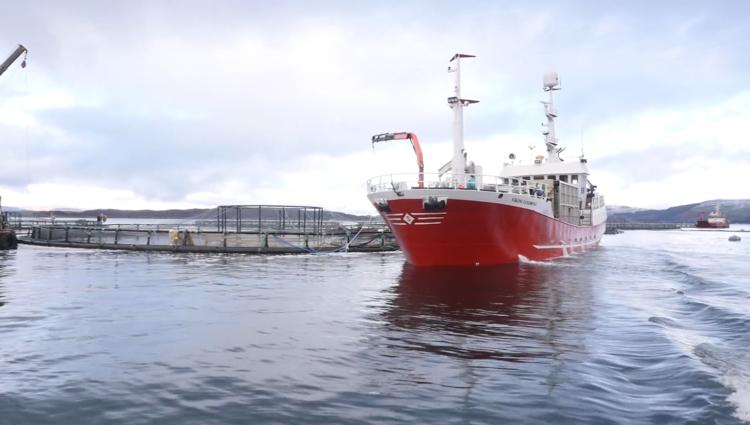 Image of Aquavac harvest video