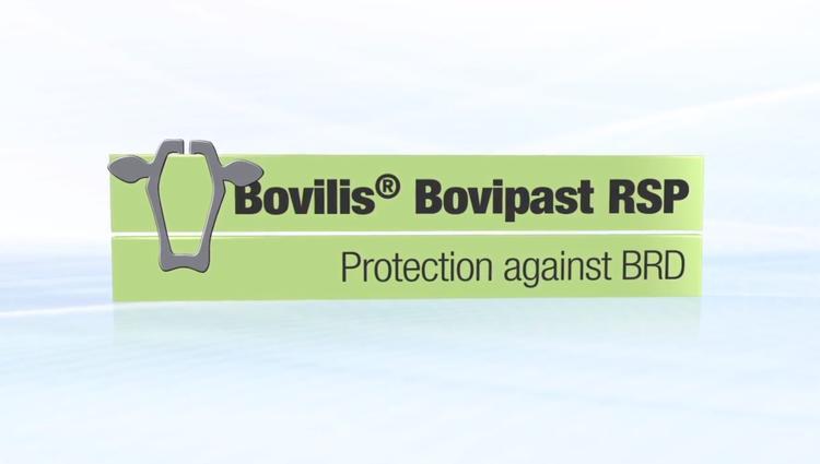 Bovilis Bovipast RSP imagery