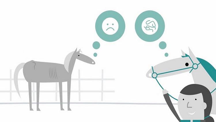 Screengrab of Worm Control animation