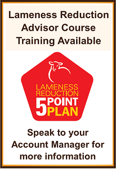 Image of Lameness Reduction 5 Point plan logo and text
